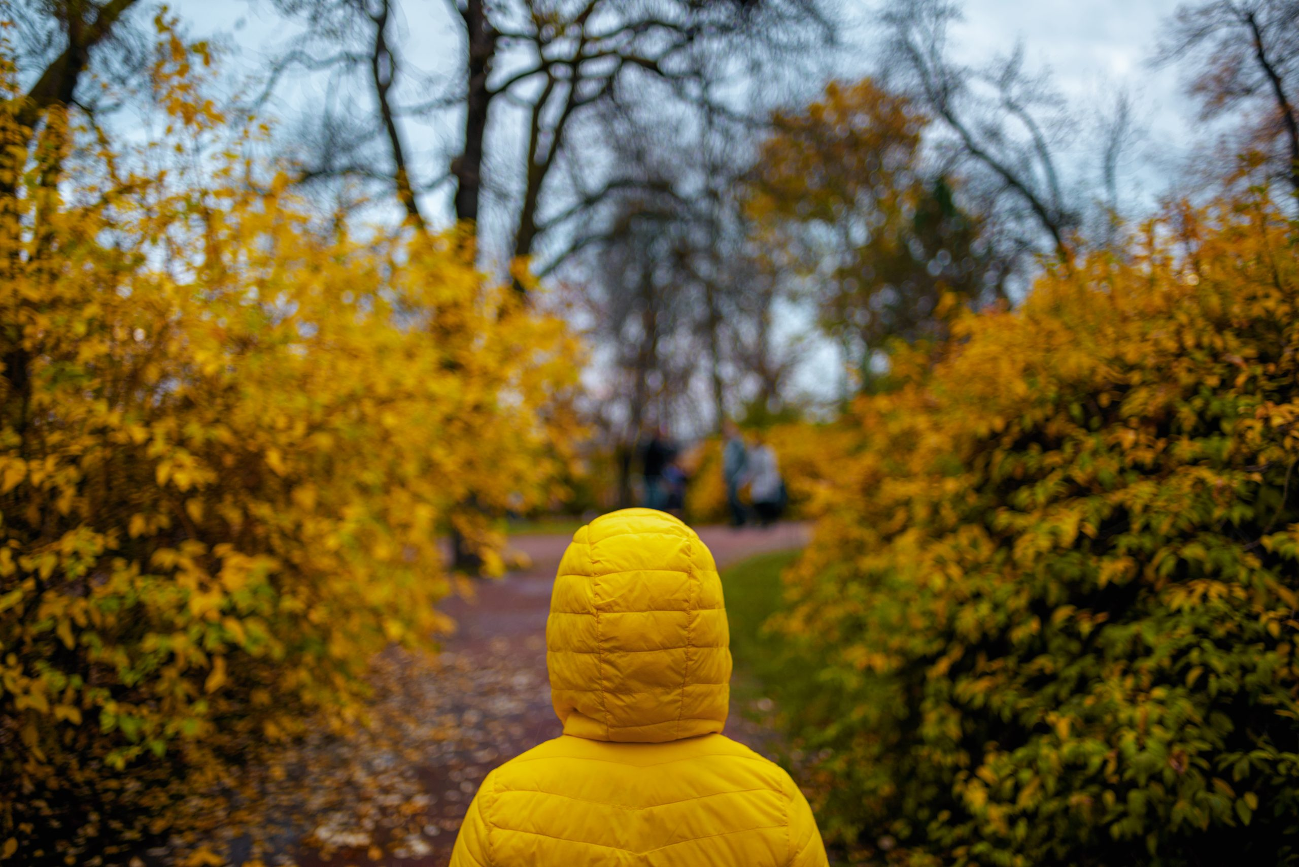 Hello,November.,Seen,From,Behind,Child,In,Yellow,Jacket,Walking